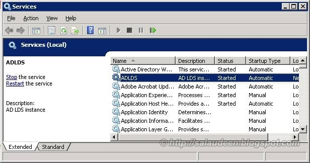 Varify AD LDS instance in Services Console