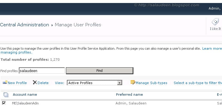 setting up my sites in sharepoint 2010