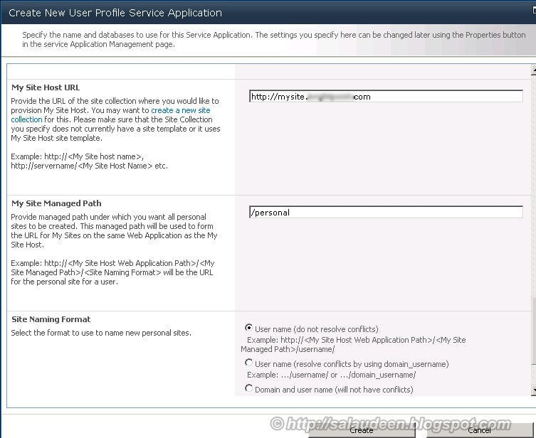 setting up my sites on sharepoint 2010
