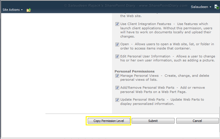 sharepoint 2010 copy permission level