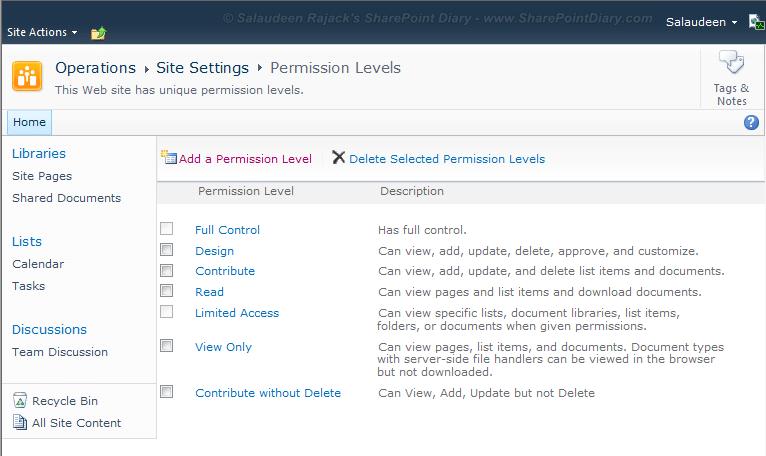 sharepoint 2010 custom permission level