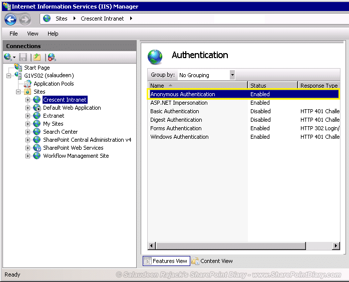 enable anonymous authentication in iis