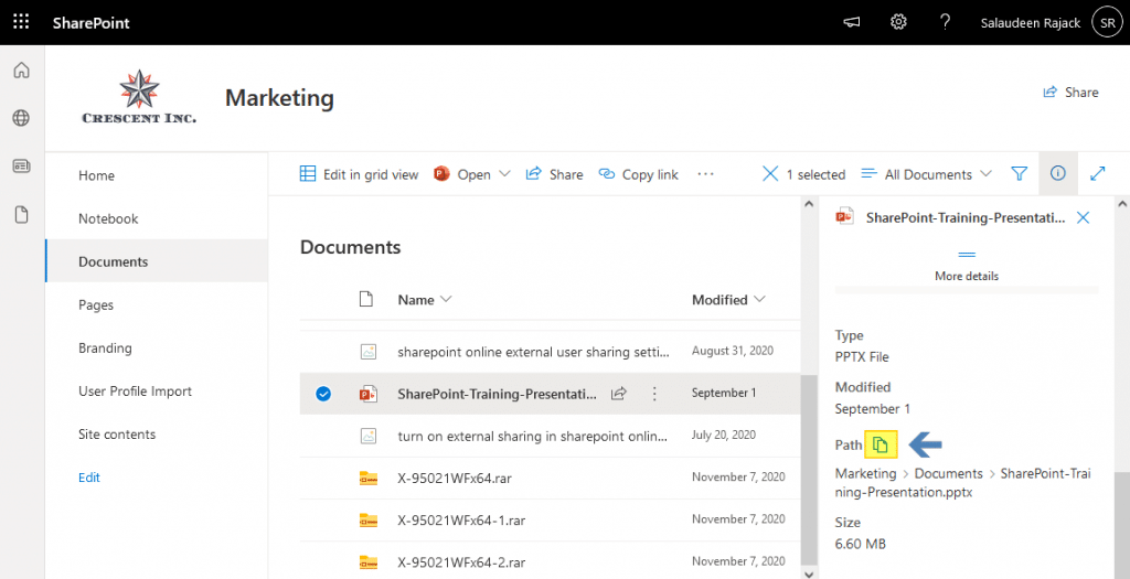 open document in browser sharepoint online